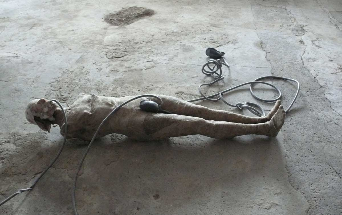 Pig, plastic, mesh and lead. Image courtesy of the artist 2014