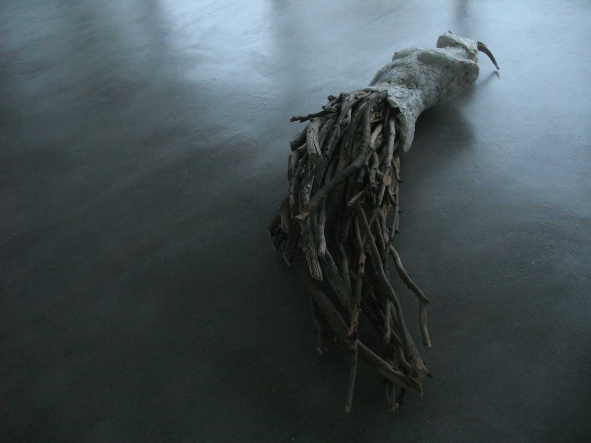 The Tropic of Capricorn wood, plastic and horn, Commune 1 2014