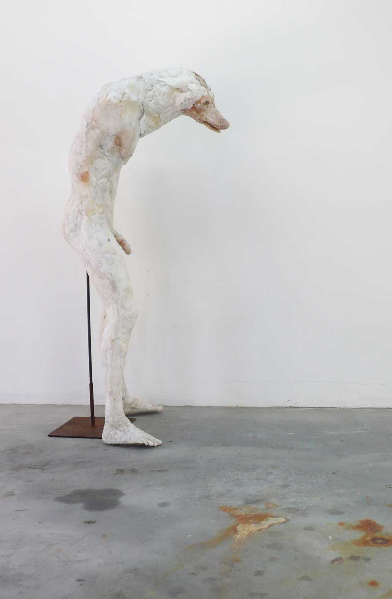 Wolf, plastic and steel, Commune 1 2014